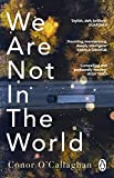 We Are Not in the World: 'compelling and profoundly moving' Irish Times