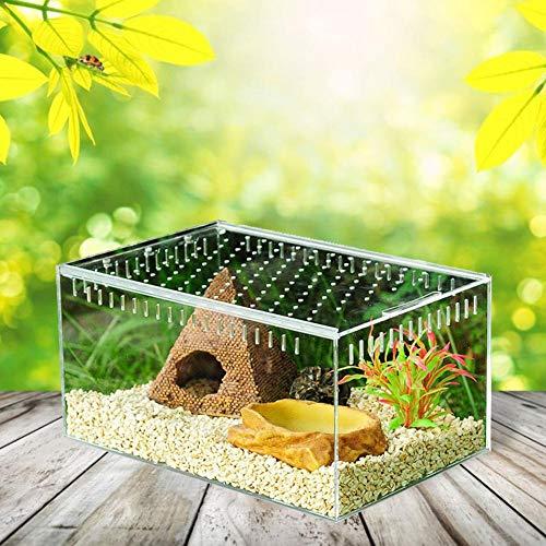 wisedwell Reptilienbehälter Terrarium Fütterungsbox Reptilienzucht Transportsbox 360° Transparent mit Schiebe Deckel für Spinnen, Skorpione, Gehörnte Frösche, Käfer