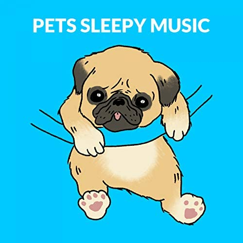 Cat Music, Music For Cats & Sleepy Dogs