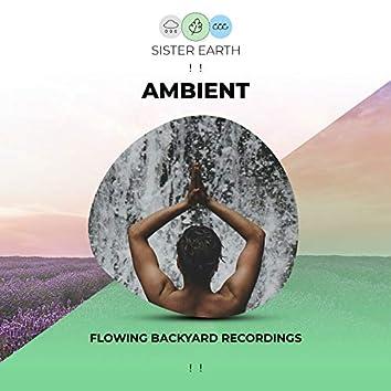 ! ! Flowing Ambient Backyard Recordings ! !
