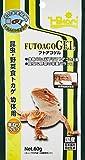 初心者でも飼える!フトアゴヒゲトカゲの飼育方法 - 初心者でも飼える!フトアゴヒゲトカゲの飼育方法