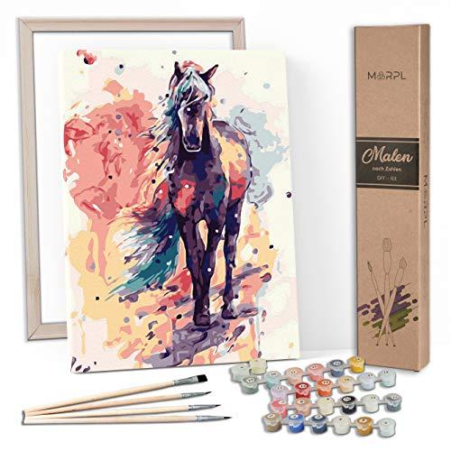 MARPL® Malen nach Zahlen Erwachsene [DIY-Kit] mit Rahmen - Malset mit vorgedruckter Leinwand für Gemälde Acrylfarben Kreativ Motiv 40 * 50cm Pferd