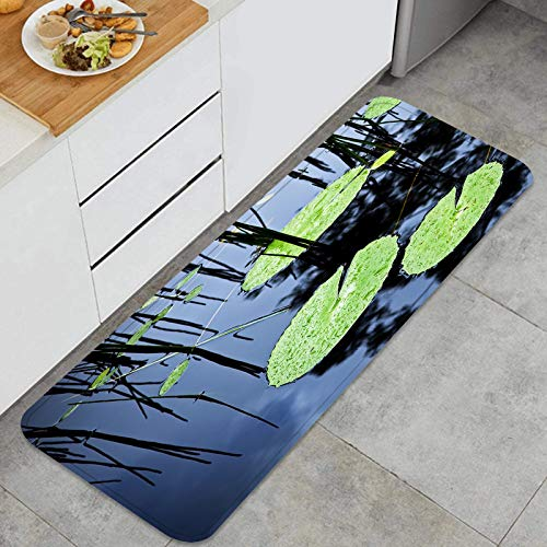Alfombrilla de cocina antideslizante La almohadilla de lirio verde brillante cubre la superficie de un estanque Decoración piso de alfombra para baño, sala de estar, oficina, fregadero-120cm x 45cm