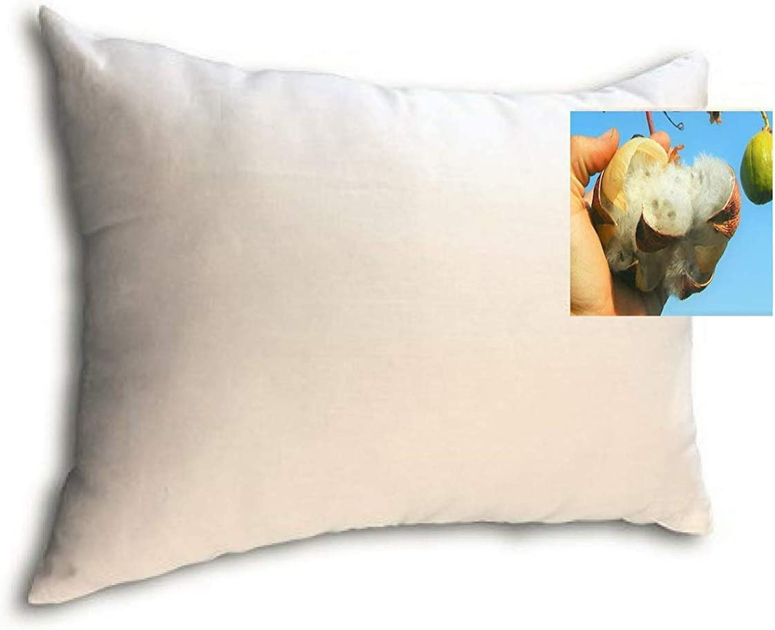 Organic Natural Kapok Filled Pillow with 2-Pack Max 85% OFF C 67% OFF of fixed price Cotton