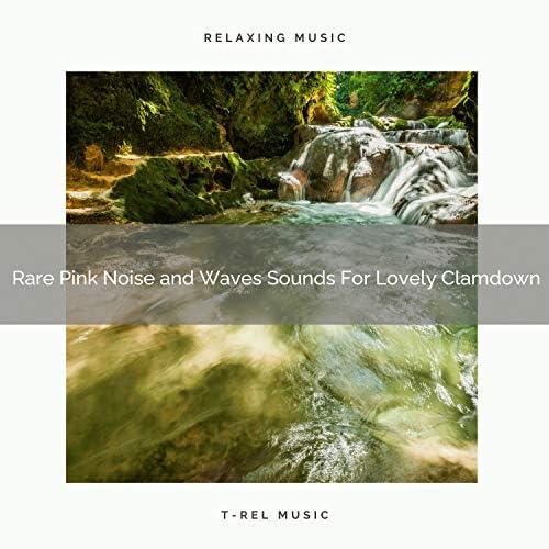 Zen Sounds & White Noise Healing Power