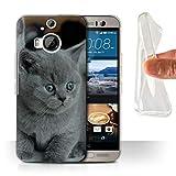 Hülle Für HTC One M9+/Plus Süß Baby Tier Fotos Graues