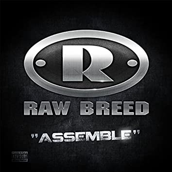 Assemble (feat. Chem)