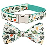 Doy Dog Collar , Dinosaur Dog Collar with Removable Bow for Small Dog ,S