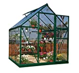 Palram Nature Series Harmony Hobby Greenhouse - 6 x 4 x 7 Forest Green (Discontinued by Manufacturer)
