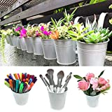 Hanging Pots for Plants - 10 Pack, White Metal, Balcony Garden Rail Railing Fence Planters, Small Succulent Pots, 4 Inch Pots for Plants with Drainage, Hanging Herb Garden, Macetas para Suculentas