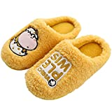 XZDNYDHGX Slippers for Women Comfortable Warm Cosy,Winter Slippers Comfortable Warm Shoes Thick...