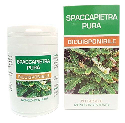 Erba Spaccapietra Pura Biodisponibile Naturpharma 50 Vegan capsule da 300 mg di Estratto Puro | Senza Glutine Senza Lattosio Vegan Approved e capsule in gel vegetale