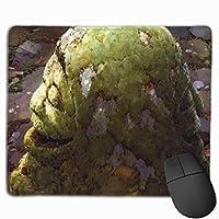 宮崎駿タイムマテリアル マウスパッド ゲーミング 光学マウス対応 パソコン かわいい 防水 洗える 滑り止め おしゃれ 高級感 耐久性が良い 25*30cm One Size