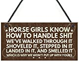RED OCEAN Horse Signs Funny Hanging Plaque Horse Signs For Bedroom Signs About Horses Keepsake Gift