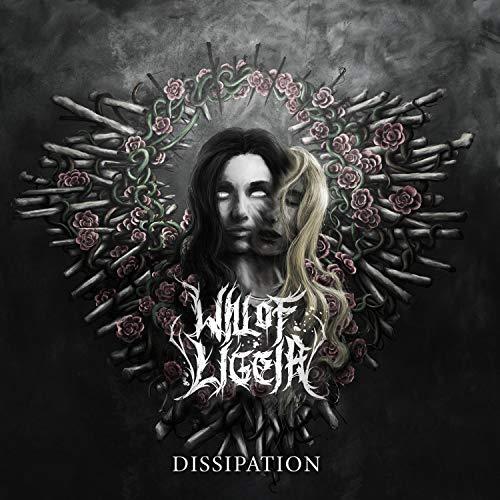 Dissipation