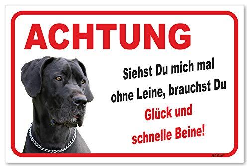 AdriLeo Schild - Vorsicht Deutsche Dogge - Ohne Leine - (30x40cm) / Graues Fell Achtung Hund Wachhund
