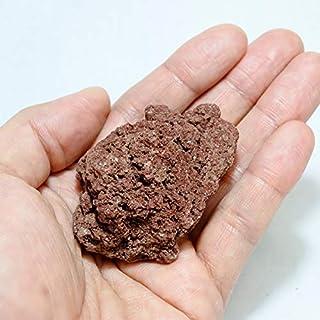 コケのインテリア コケリウム テラリウム コケリウム 石 天然石 天然赤溶岩石SS (形状お任せ)