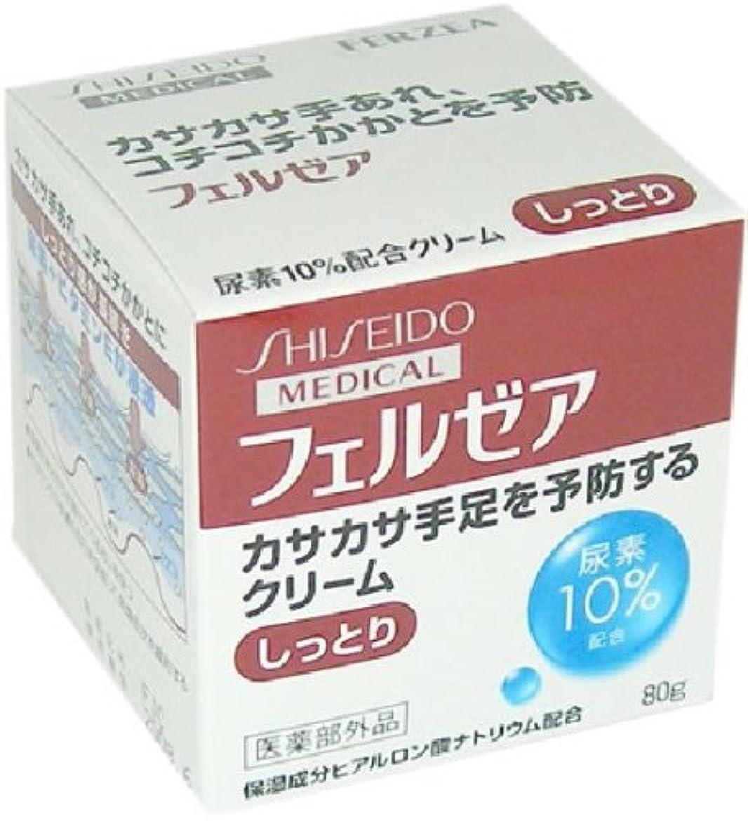 イディオム政策養うフェルゼア クリームM しっとりジャータイプ 尿素10%配合 80g [指定医薬部外品]