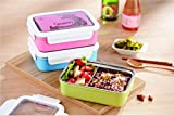 Shopaholic Bento Stainless Steel Lunch Box 1.1 Litre For Kids/Teenager With Partition (Pink)
