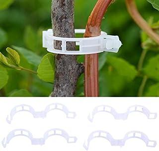 Jardin Gshy Plante Clips Plastique Pinces Clips à Suspendre Clips de Vigne Vigne Clipsplant Clips Support Tomates Poivrons Vigne Plantes et Fleurs de Développement Droit 100 pcs Treillis et aménagement paysager