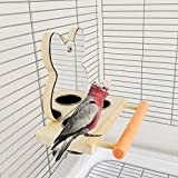 Perchoir en bois avec miroir et bol en acier inoxydable pour cage à oiseaux - Jouet en bois pour perroquet, perruche, calopsitte, conure, pinson, inséparable, ara gris africain