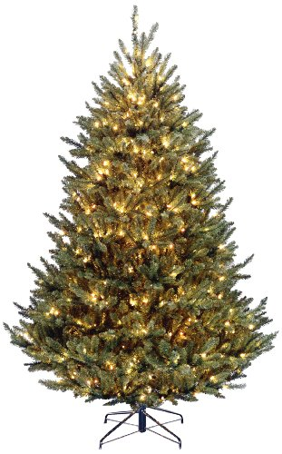 National Tree Company Pre-lit Artificial Christmas Tree | Includes Pre-strung White Lights | Fraser Fir Medium - 7.5 ft