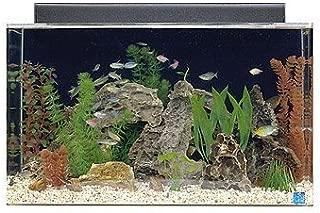 clear for life hexagon acrylic aquarium