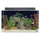 SeaClear 29 gal Show Acrylic Aquarium Combo Set, 30 by 12 by 18', Cobalt Blue