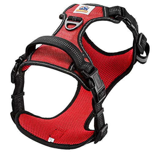 Pordlie Dog Harness No Pull Outdoor, Upgraded Easy Put on & Off No Choke Pet Harness with Control Training Handle, Adjustable Reflective Padded Vest Harness for Small Medium Large Dogs (L, Fuschia)