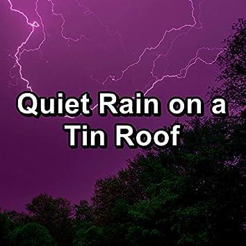 Quiet Rain on a Tin Roof