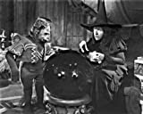 New 8x10 Photo: Wicked Witch of the West and Flying Monkey in'The Wizard of Oz'