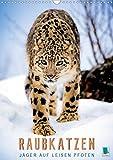 Raubkatzen: Jäger auf leisen Pfoten (Wandkalender 2020 DIN A3 hoch): Sprungkraft, Eleganz und Schönheit: Jaguar, Löwe und Ozelot (Monatskalender, 14 Seiten ) (CALVENDO Tiere)