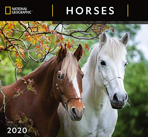 National Geographic Horses 2020 Wall Calendar