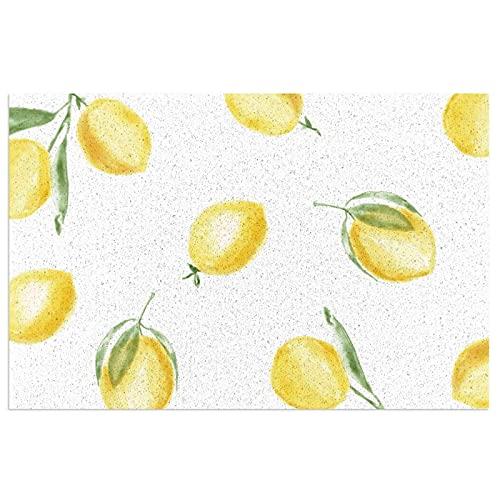 DLJIYZX Felpudo Rebanadas de limón Alfombrillas de Entrada Alfombra Antideslizante de PVC Alfombra de pie Alfombra de Cocina Alfombra de baño Alfombra 40X60CM