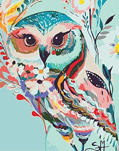 HCDZF Pintura al óleo fácil – Colorido búho DIY pintura por números kits para adultos principiantes pinturas sobre lienzo 40 x 50 cm, sin marco