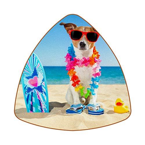 Bennigiry Posavasos resistentes al calor con diseño de perro con tabla de surf para café, té, juego de 6