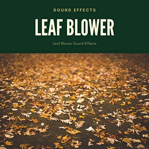 Leaf Blower Sound Effects