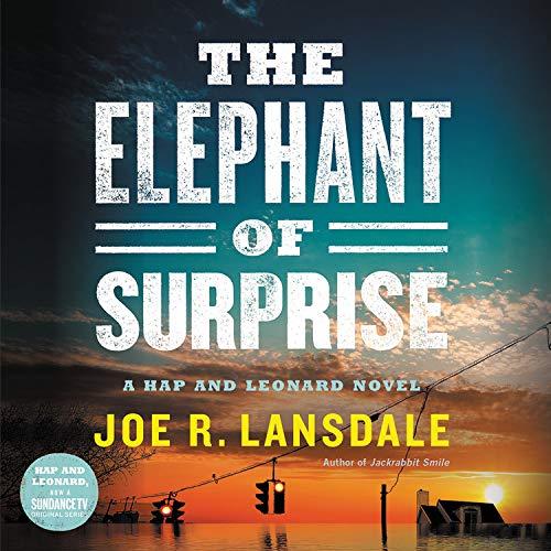 The Elephant of Surprise Titelbild