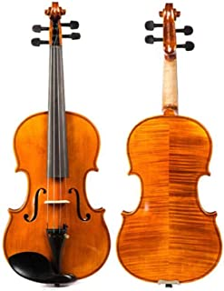 Fengshangshanghang Violin, Ebony Handmade Solid Wood Violin 4/4 Professional Playing Musical Instrument, (rosin With Square Hard Box), sound quality and transparency (Size : 4/4)