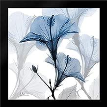 Steel Hibiscus 28x28 Modern Black Wood Framed Art Print by Koetsier, Albert
