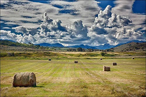 Photograph of Farm Land with Giant Round Hay Stacks in Green Grass Pasture with Mountains and Dramitic Clouds