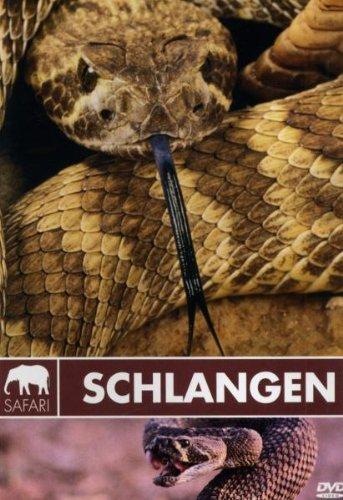 Safari - Schlangen