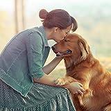 AniPlus – Kieselgur forte 400 g für Hunde unterstützt die Fell- und Hautbeschaffenheit mit wertvollem Silizium (100% biologisch) - 4