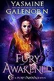Fury Awakened (Fury Unbound Book 3)