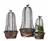 Creative Co-Op DE6220 Set of 3 Metal Planters with Wire Cloches