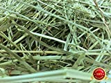 Rabbit Hole Hay Ultra Premium, Hand Packed Soft Orchard Grass for Your Small Pet Rabbit, Chinchilla,...