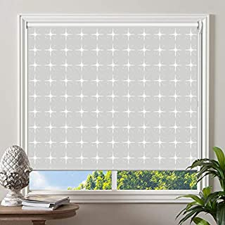 PASSENGER PIGEON Blackout Window Shades, Premium UV Protection Water Proof Custom Roller Blinds, Printed Picture Window Roller Shade, 63