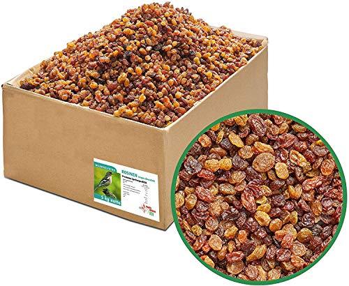 Paul´s Mühle Rosinen, ungeschwefelt in Speisequalität, Wildvogelfutter für Insekten- und Früchtefresser (5 kg)