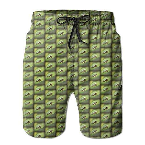 Grauer Laubfrosch Rose Sharon Lea gedruckt Herren Beach Shorts Board Badehose Quick Dry Badeanzug mit Mesh-Futter,Größe M