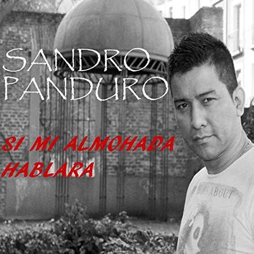 Sandro Panduro